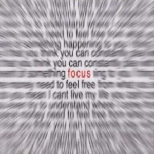 231-focus